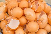 Eggshell Broken Brown, Crack The Egg