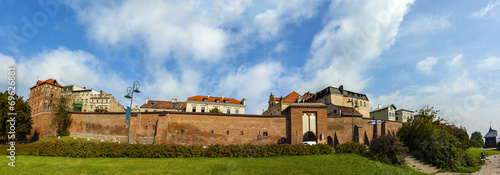 Panoramic view of Torun old town, Poland.