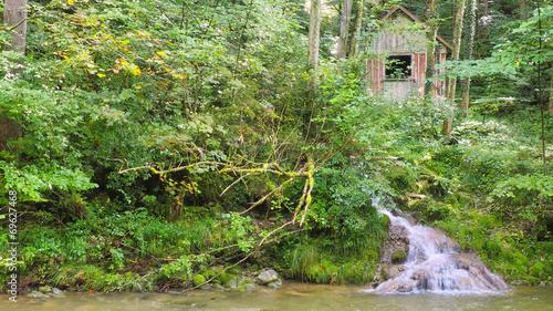 Foto op Canvas Pistache Einsame Waldhütte
