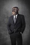 Monkey businessman - 69632457