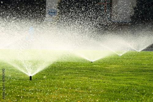 Papiers peints Jardin garden sprinkler on the green lawn