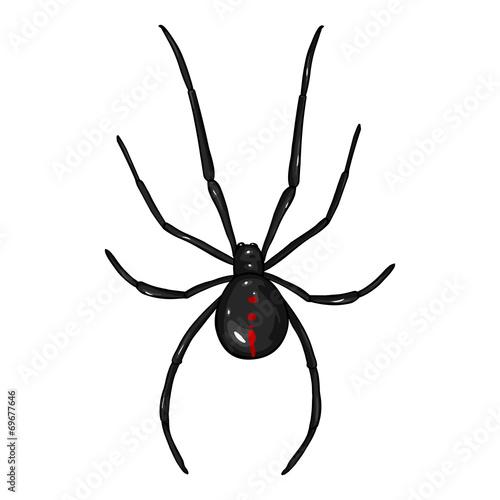 Photo  Vector Cartoon Black Widow Spider