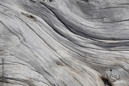 Photo Natural driftwood close up texture background