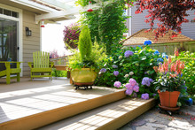 Deck With Beautiful Flowers In...