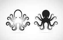 Vector Of An Octopus On White Background. Animals.