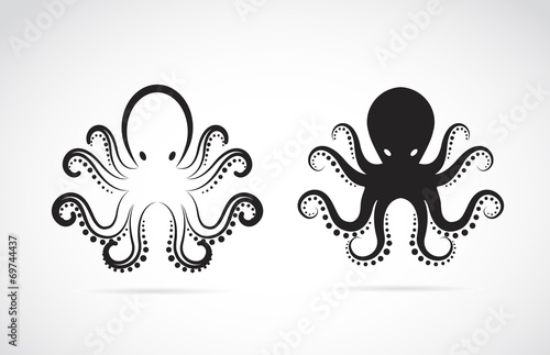Fotografie, Obraz  Vector image of an octopus on white background.