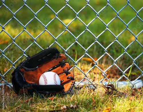 Baseball in Glove on Green Grass Poster