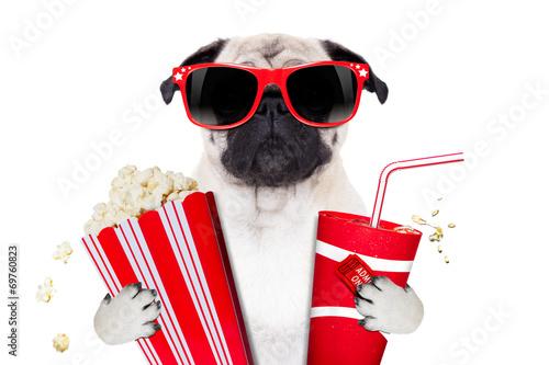 Fototapety, obrazy: movie dog