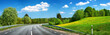 canvas print picture - Asphalt road and dandelion field