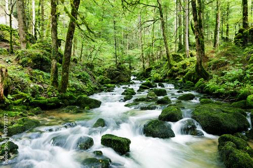 Wasserfall im Wald - 69772872