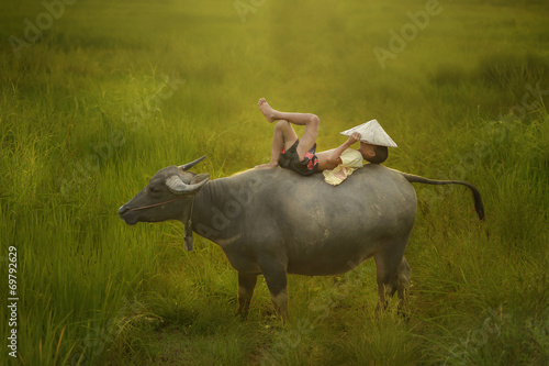 Foto auf Leinwand Buffel Happy boy riding water buffalo.