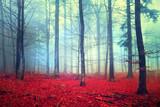 Fantasy autumn forest scene