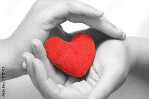 Obraz w ramie Heart in palms (BW)