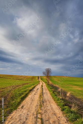 Krajobraz wiejski,polna droga,