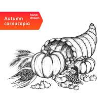 Cornucopia. Horn Of Plenty With Autumn Harvest Symbols