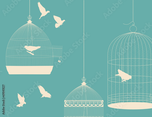 Birds and birdcages postcard 5 Canvas Print