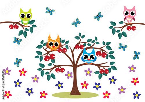 sowy-ma-drzewie