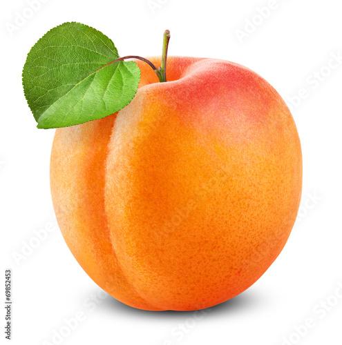 Fotografija Fresh apricot