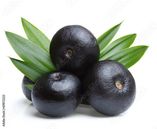 Photo Amazon acai fruit with leaf