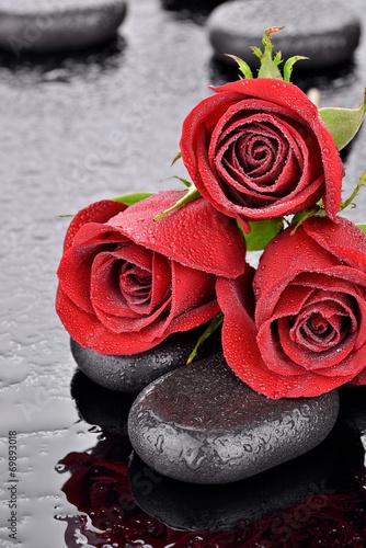 Czerwone róże na kamieniach bazaltowych #69893018