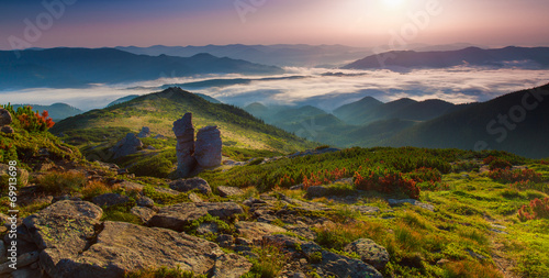 morning mountain plateau landscape (Carpathian, Ukraine)