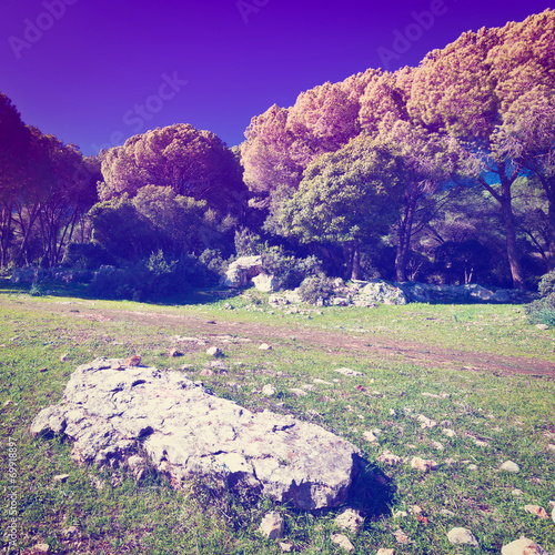 Spoed Foto op Canvas Violet Big Stones