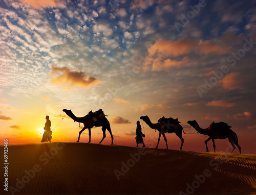 Photo sur Aluminium Chameau Two cameleers (camel drivers) with camels in dunes of Thar deser