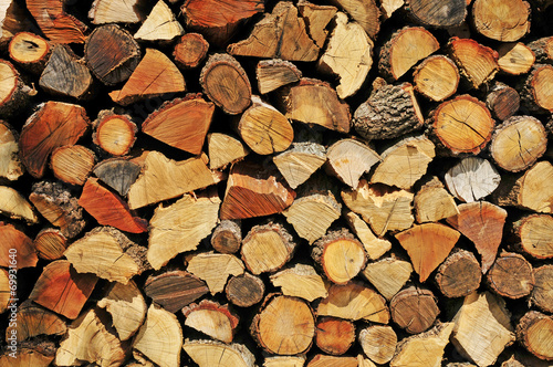 firewood logs Poster