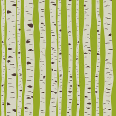 Fototapeta Birches in vector