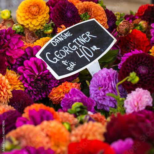 bouquets of dahlias flowers at market in Copenhagen,Denmark Poster