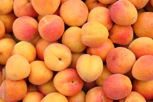 Leinwand Poster Apricots