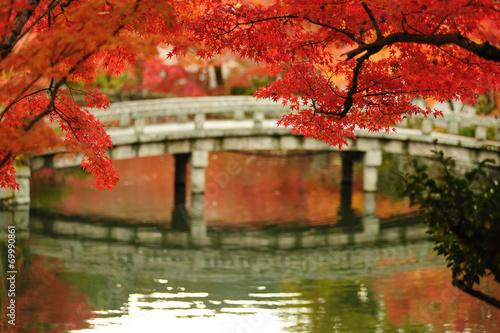 Foto op Plexiglas Japan Autumn foliage at Eikando Temple in Kyoto, Japan