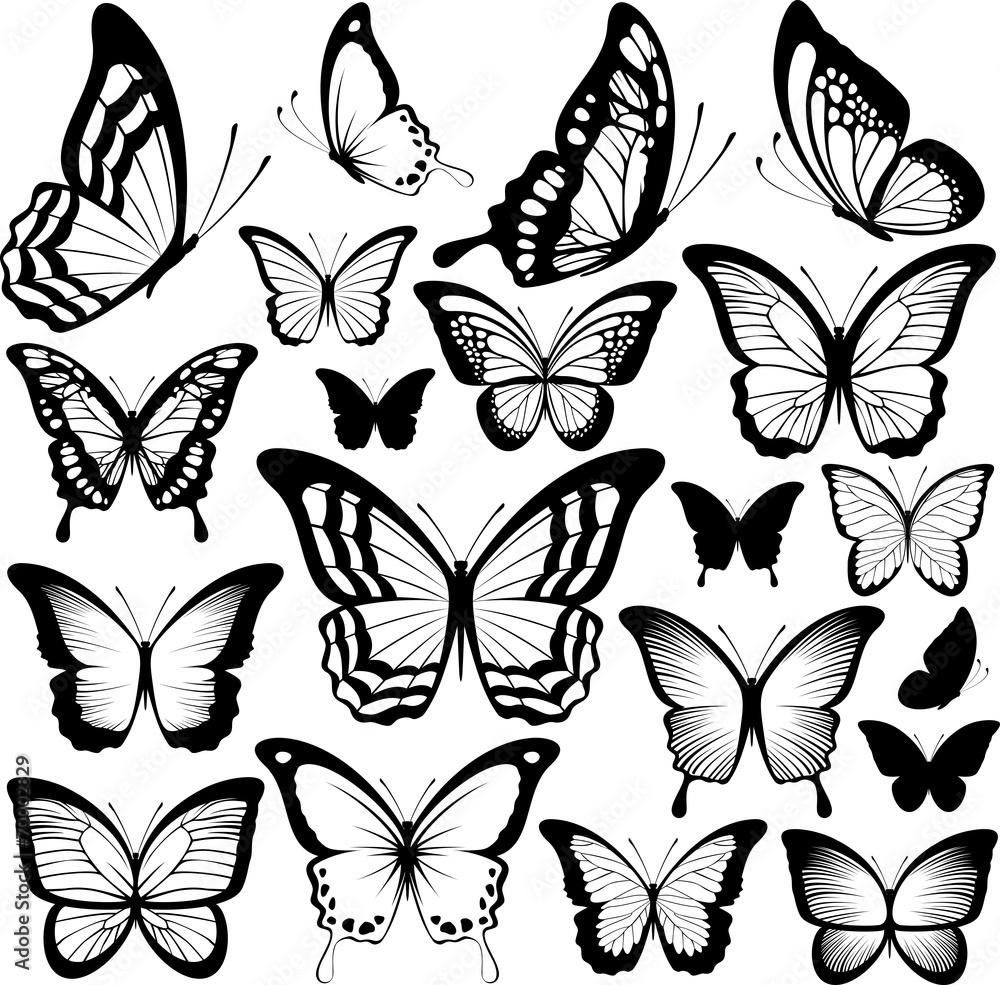Fototapeta butterflies black silhouettes