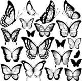 butterflies black silhouettes