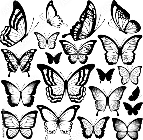 Fotografie, Obraz  butterflies black silhouettes