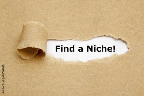 Fotografie, Obraz  Find a Niche Torn Paper Concept