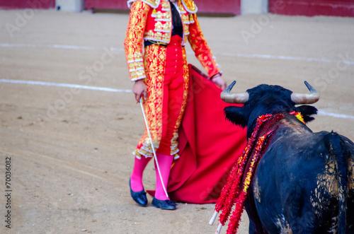 Foto op Canvas Stierenvechten Torero and bull