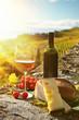 Wine and cheese. Lavaux region, Switzerland