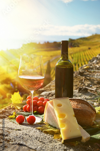 Foto op Canvas Alcohol Wine and cheese. Lavaux region, Switzerland