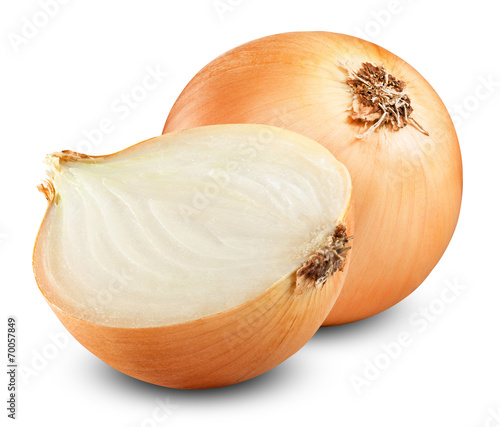onion bulbs Canvas Print