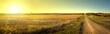 canvas print picture - Sunrise Road