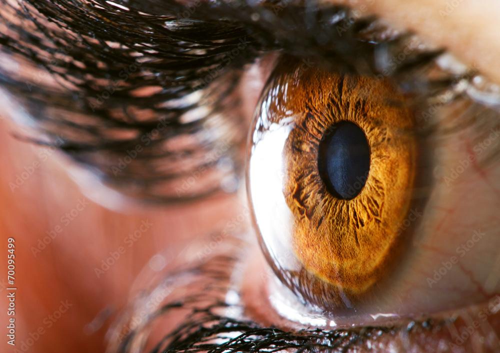 Fototapety, obrazy: Human eye