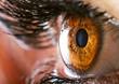 Leinwandbild Motiv Human eye
