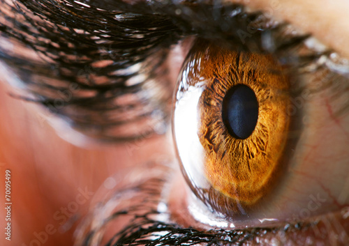 Wall Murals Macro photography Human eye