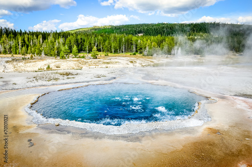 Poster Natuur Park Landscape view of Crested pool in Yellowstone NP