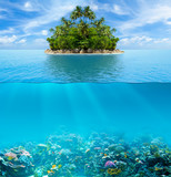 Fototapeta  - Underwater coral reef seabed and water surface with tropical isl
