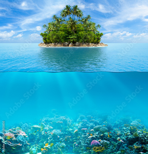 Fotobehang Koraalriffen Underwater coral reef seabed and water surface with tropical isl