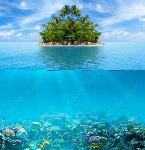 Podwodne rafa koralowa dno morskie i powierzchnia wody z tropikalną wyspą