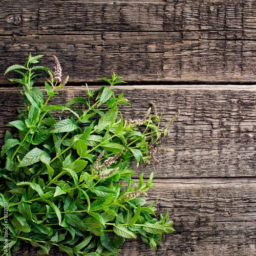 фотография  Fresh  mint leaves on old wood background