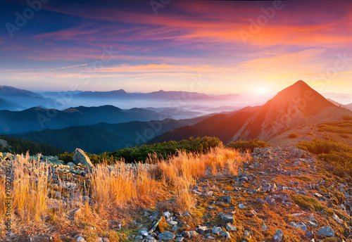 In de dag Crimson Colorful autumn sunrise in the mountains.